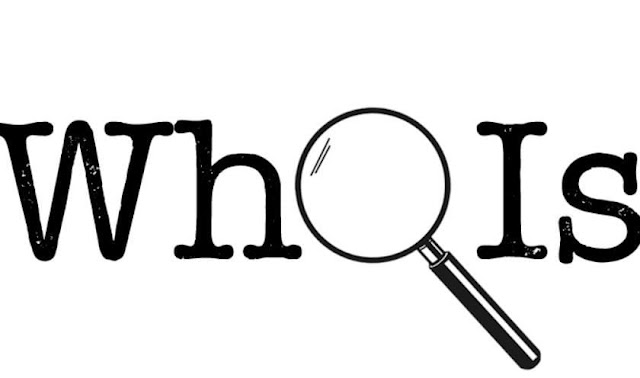 The Ultimate Guide to the WHOIS Database