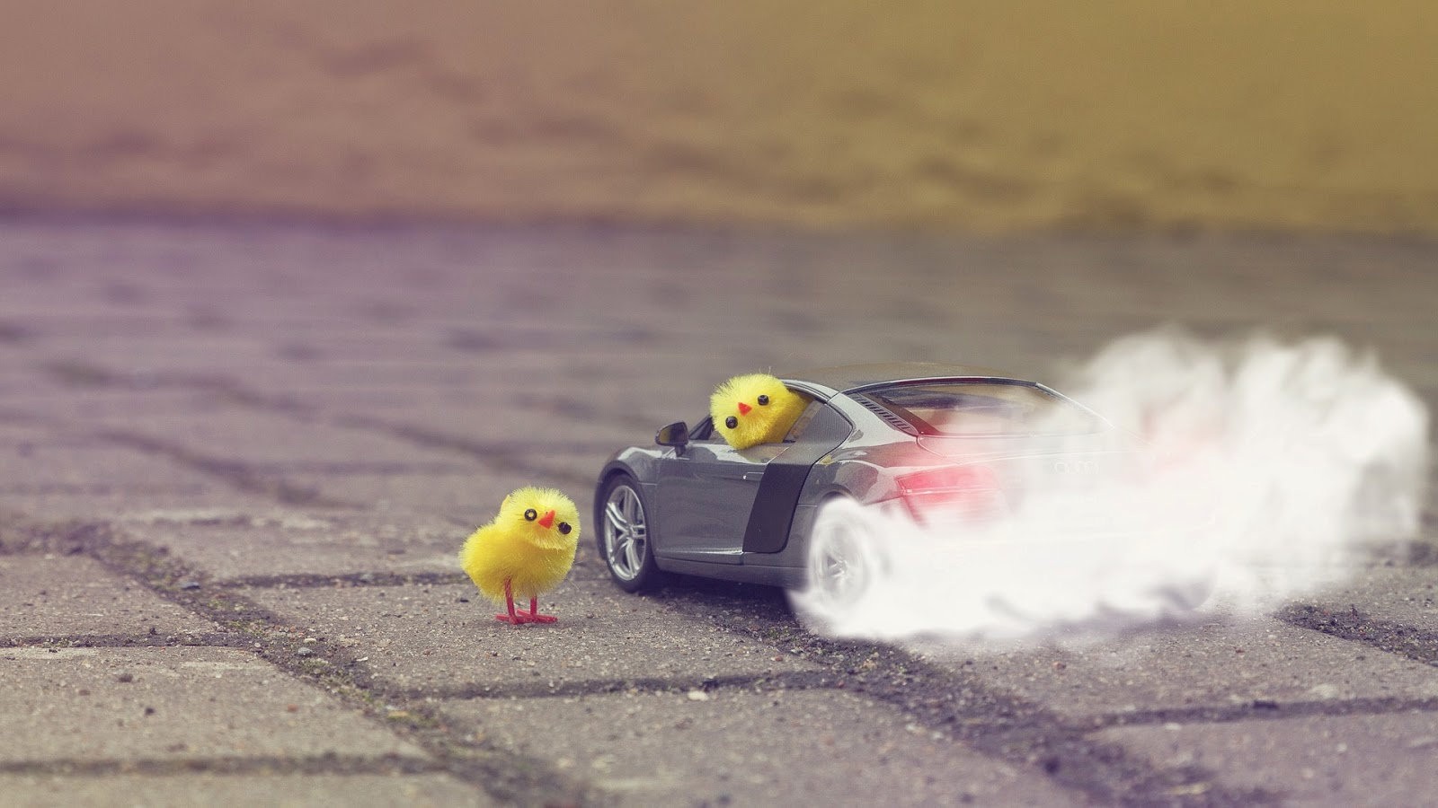 chicken-having-trouble-with-sports-car-funny-picture-for-kids.jpg