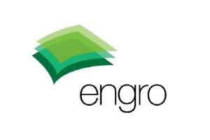 Engro Corporation Jobs Manager Enterprise Architect