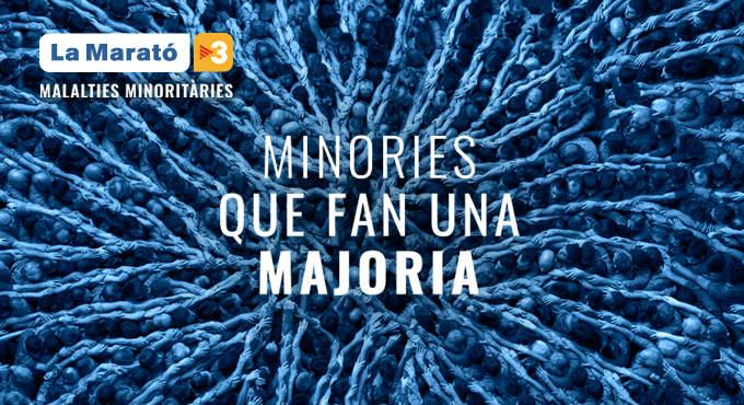 Activitats de La Marató de TV3 2019 al Poblenou