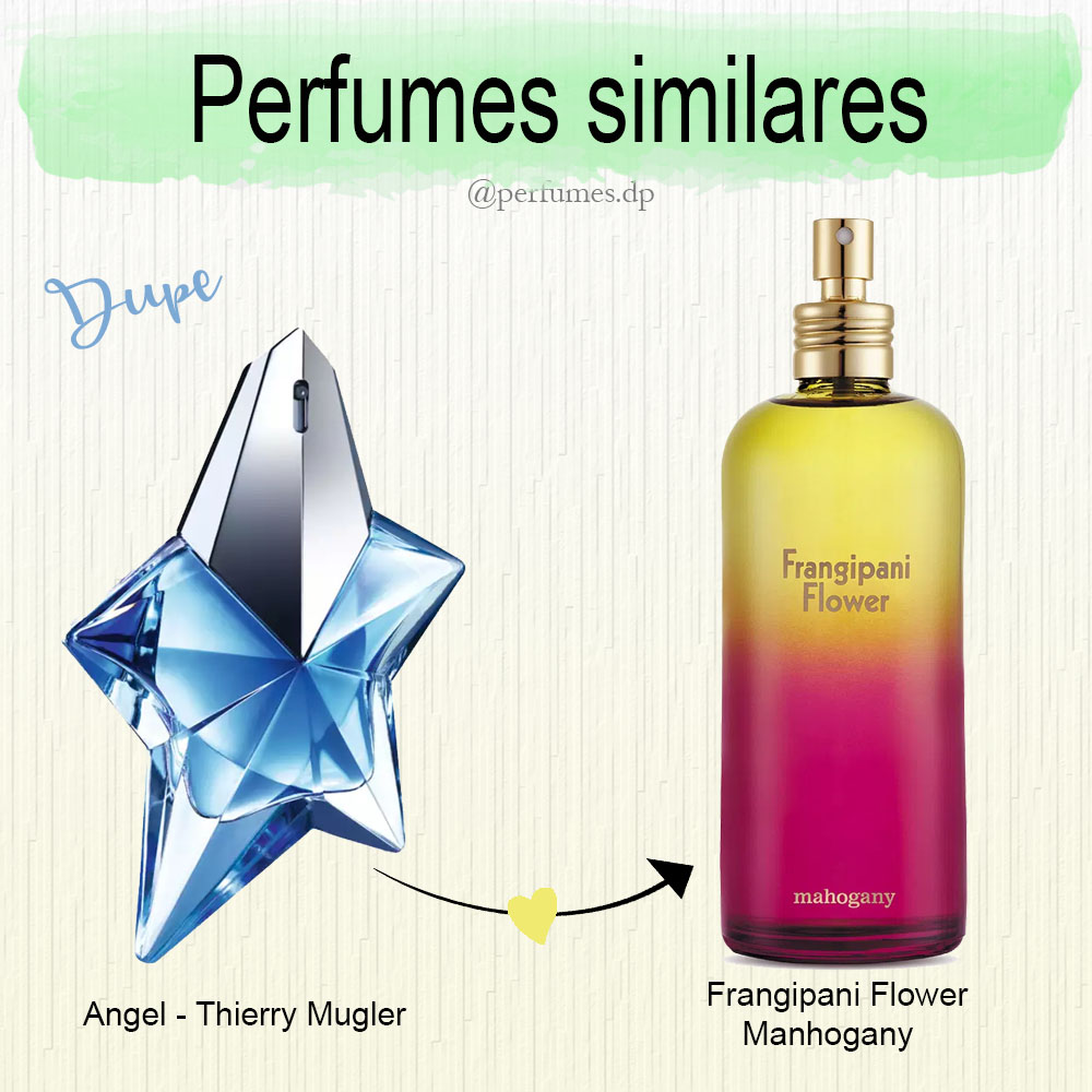 Perfumes dupes do Angel