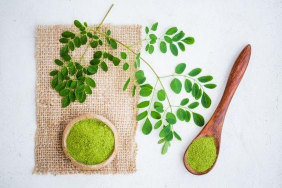 الفوائد الصحية والجمالية المعجزة لشجرة الحياة أو شجرة المورينجا