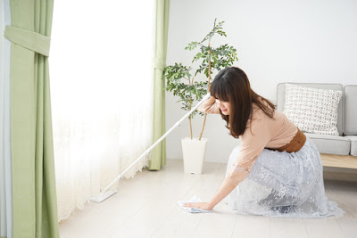 Benefits Gained By Using House Cleaning Professionals