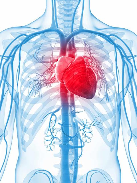 shambulio la moyo/Heart attack