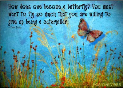 Trina Paulus, Butterfly, Caterpillar, Inspiration, Motivation, Empowerment, Quotes