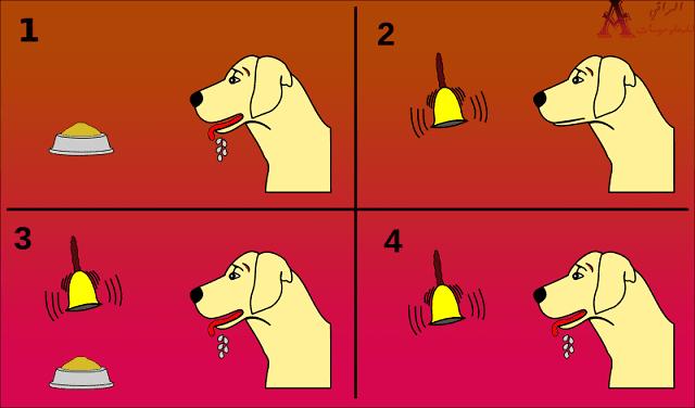 نظرية كلاب بافلوف