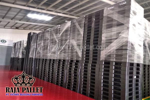 1600 Pcs Pallet Plastik Cargo dan Ekspor Siap Kirim