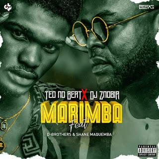 Teo No Beat  Dj Znobia ft. D-Brothers  Shane Maquemba - Marimba Remix (Tarraxinha) [DOWNLOAD MP3]