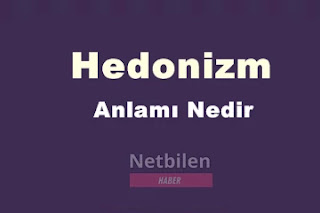 Hedonizm akımı