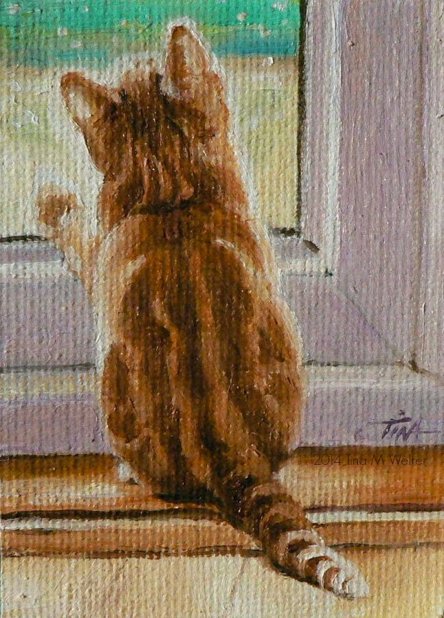 Original ACEO oil painting by Tina M Welter, small orange kitten waiting at the window.