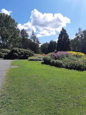 Kukkaloistoa ja vehreyttä Hatanpään Arboretumissa