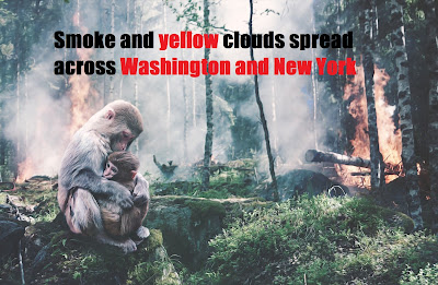 Smoke and yellow clouds spread across Washington and New York