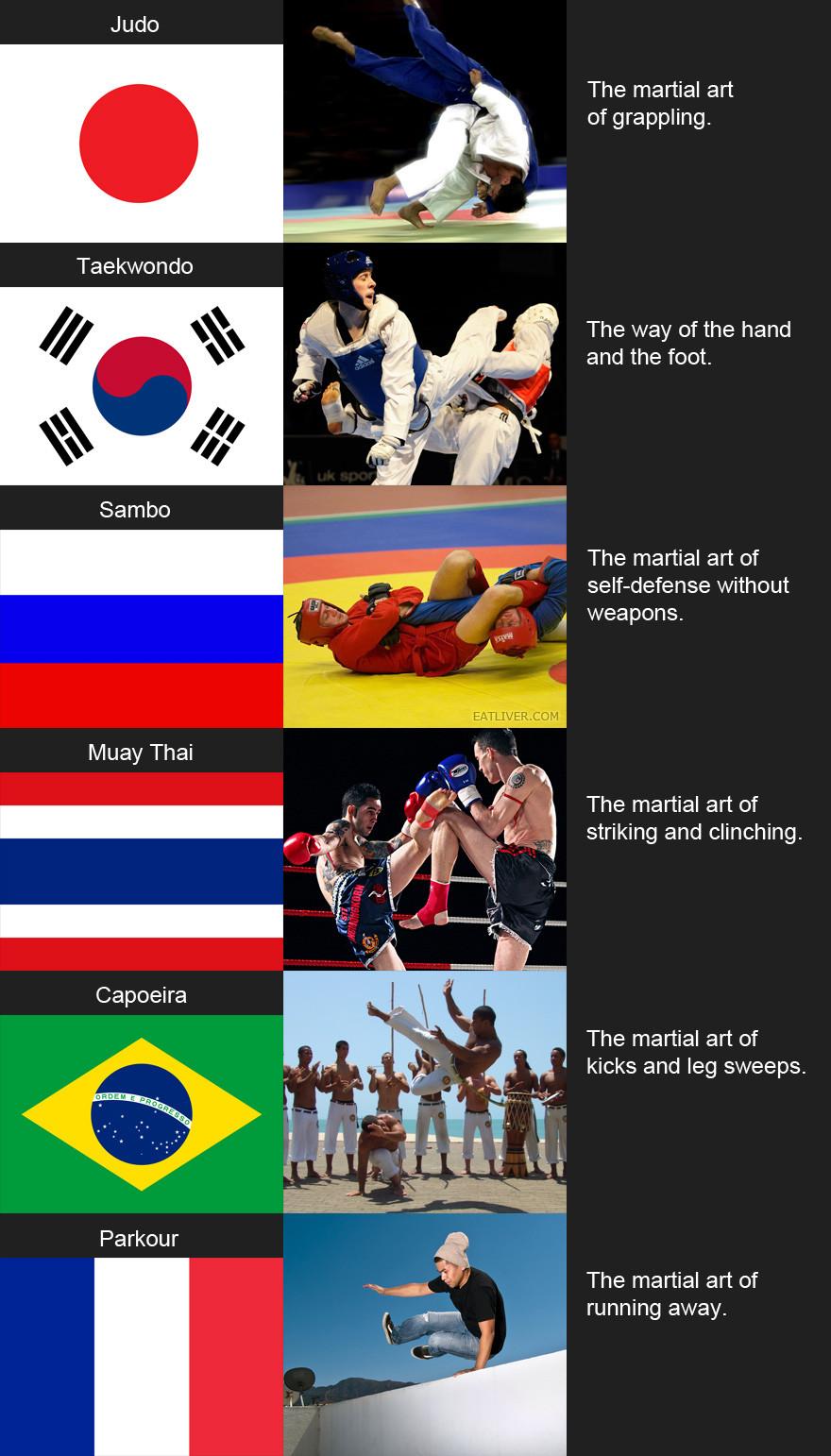Martial arts around the world   STRENGTHFIGHTER.COM