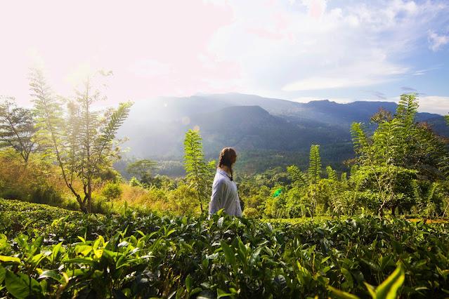 How Safe Is Sri Lanka for Tourists 2021?