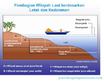 Jenis Laut Menurut Letaknya - pustakapengetahuan.com