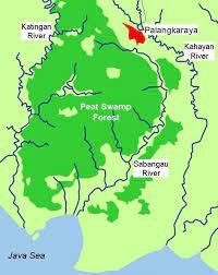 Letak dan Luas Taman Nasional Sebangau