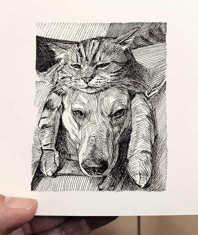 04-A-dog-with-a-cat-hat-Alberto-Russo-www-designstack-co
