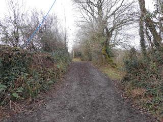 Unmetalled road, Mid-Devon, January