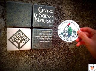 Immagine - Logo CSN - Prato