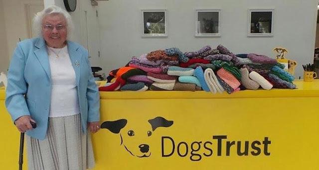 Эта 89-летняя женщина связала 450 одеял и свитеров для собак из приютов