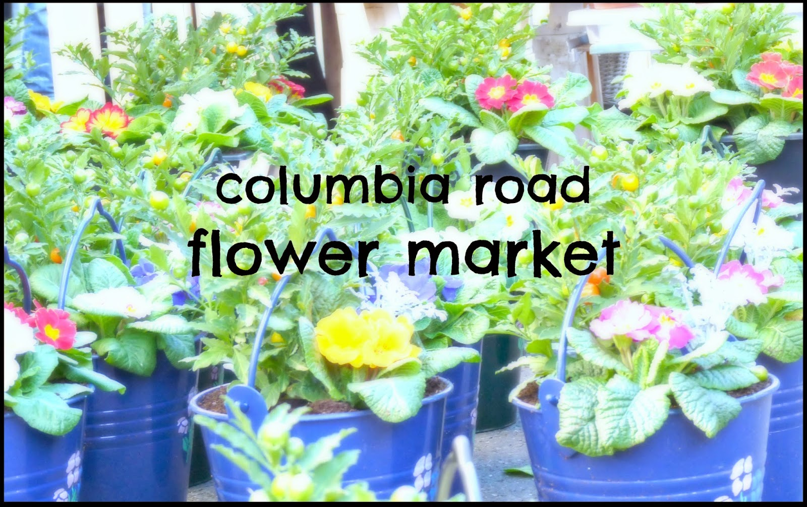 columbia road flower market Londres