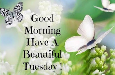 good morning Tuesday god bless you images