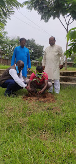 सरस्वती शिशु विद्या मंदिर में पौधरोपण करते प्राचार्य व अन्य