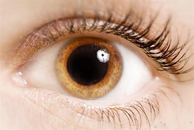 اتساع بؤبؤ العين - لغة العيون - لغة الجسد