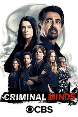 Mentes Criminales (12