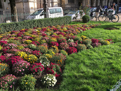 Floral gardening along street corners in Paris