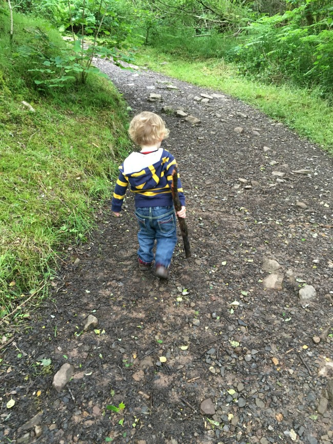 Garwnant-Visitor-Centre-A-Toddler-Explores-hill-with-toddler-carrying-huge-stick