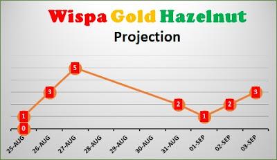 Wispa Gold Hazelnut Share Projection