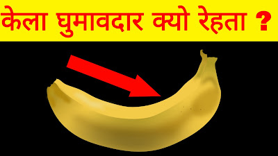 Why bananas are curved ? // Mind Blowing facts in Hindi // केले घुमावदार क्यु रहते है ?