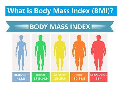 Pengertian, Manfaat dan Cara Menghitung Body Mass Index (BMI)