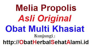 jual Khasiat manfaat melia propolis asli untuk kesehatan tubuh manusia