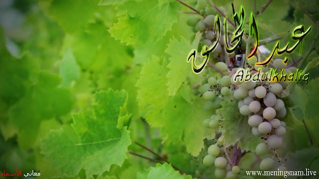 معنى اسم عبد الخالق وصفات حامل هذا الاسم Abdulkhaliq