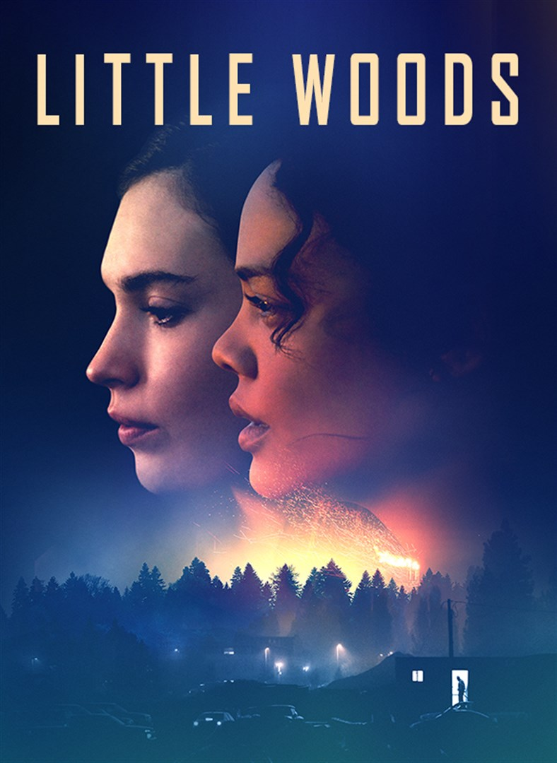 Little Woods [2018] [DVDR] [NTSC] [Subtitulado]