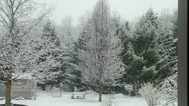 snow in Michigan