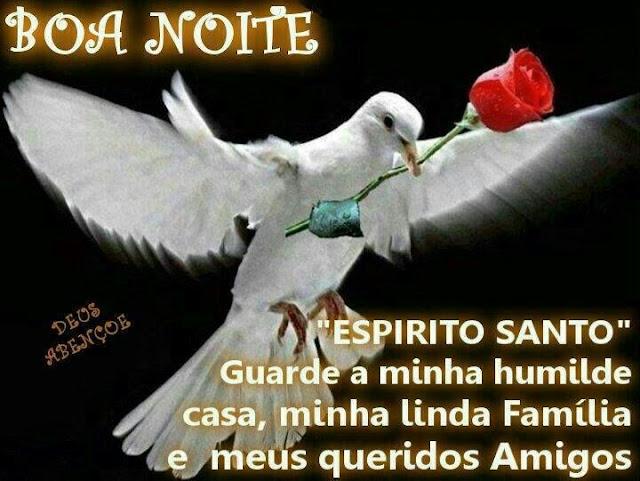 """Boa Noite Amigos E Familia: Mensagens Para O Coração: Boa Noite """"Espirito Santo"""