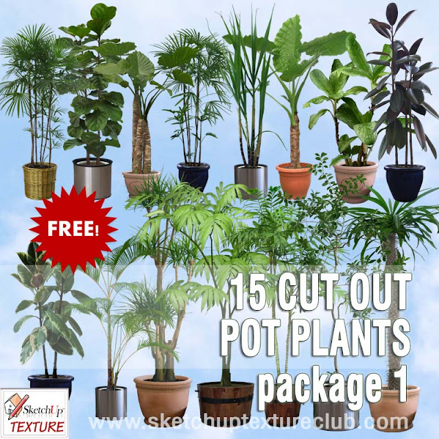 png pot plants collection #1