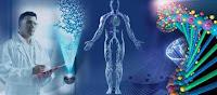 analiza%2Bkwantowa - Czym jest kwantowa analiza organizmu?