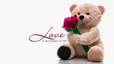 Happy Teddy Day 2020 Quotes,Wishes,Images,SMS,Status,Shayari In Hindi and English | Valentines day 2020