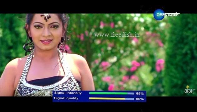 Zee Biskope Bhojpuri Movie Channel Test Card added on Ch. No. 31