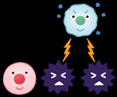 ウイルスを攻撃する免疫細胞