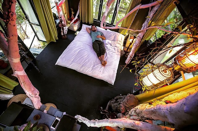 5 'extremely chill' homestays right in Hanoi for the lazy to go away