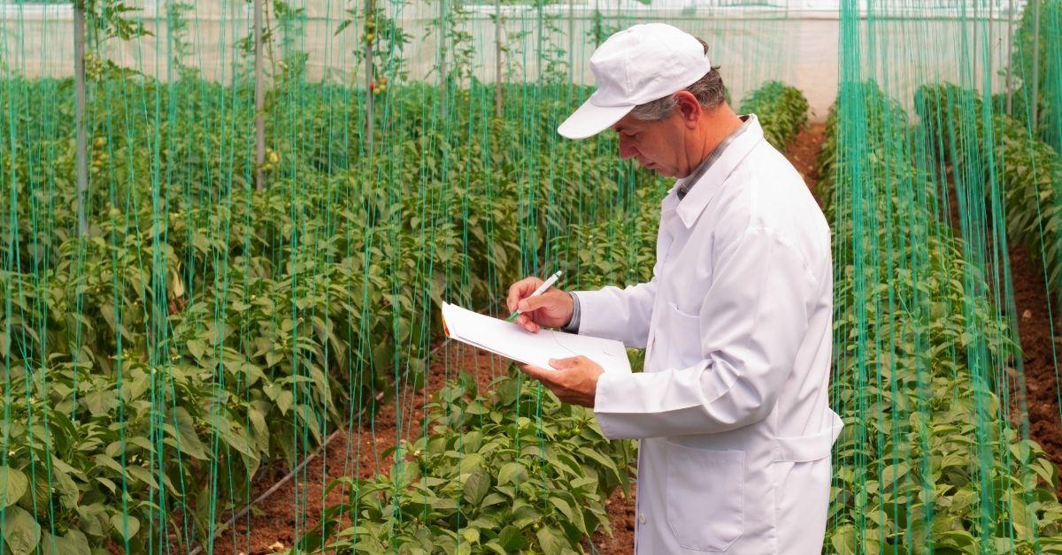 الزراعة تخصص من تخصصات الهندسة