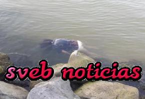 Hallan cadaver flotando en aguas de Coatzacoalcos Veracruz