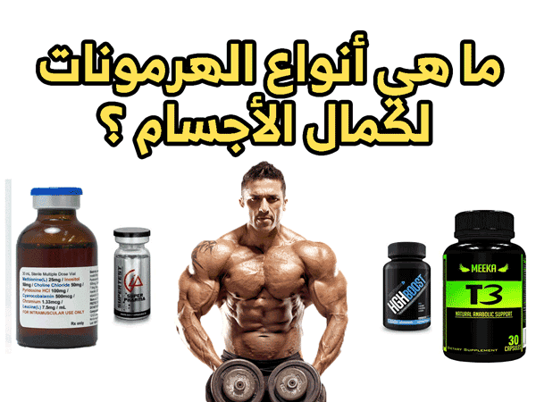 أنواع الهرمونات لكمال الأجسام