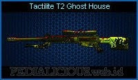 Tactilite T2 Ghost House