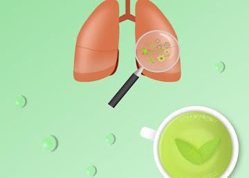 Receita Contra Bronquite: Chá de Sálvia